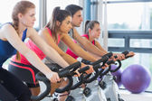 Four people working out at spinning class — Stock fotografie
