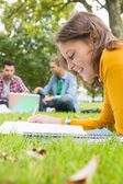 Student writing notes with males using laptop in park — Стоковое фото