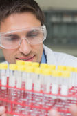Male researcher looking at test tubes in the lab — Stock Photo