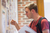 Handsome student studying notice board — Stock Photo