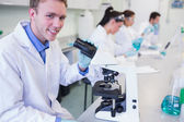 Researchers working on experiments in the lab — Stock Photo