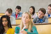 Concentrating students sitting at lecture hall — Stock Photo
