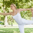Calm young woman doing yoga standing in a park — Stockfoto