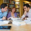 Adult students studying together in the library — Stock Photo #36182509