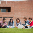 Five casual students sitting on the grass using laptop — Stock Photo #36182981
