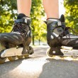 Close up of woman wearing inline skates — Stock Photo #36183347