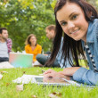 Stock Photo: Female with tablet PC while others using laptop in park
