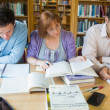 Adult students studying together in the library — Stock Photo #36185753