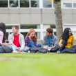 Foto Stock: College students sitting in park