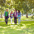 Stock Photo: Froup of college students walking in the park