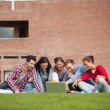 Five casual students sitting on the grass pointing at laptop — Stok fotoğraf