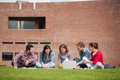 ラップトップを使用して草の上に座って 5 カジュアルな学生 — ストック写真