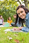 Female with tablet PC while others using laptop in park — Stockfoto