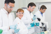 Group of scientists working at the laboratory — Stock Photo