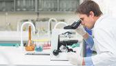 Scientific researcher using microscope in a laboratory — Stock Photo