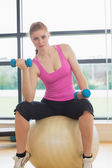 Fit beautiful woman with dumbbells sitting on exercise ball — Stock Photo