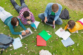 College students using laptop while doing homework in park — Stock Photo