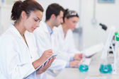 Researchers working on experiments in the laboratory — Stock Photo