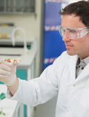 Male scientist analyzing pills in the laboratory — Stock Photo