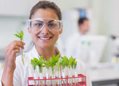 Smiling female scientist analyzing young plants at lab — Stock Photo