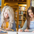Students writing notes with stack of books at library desk — Stock Photo #36244861