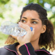 Stock Photo: Close up of tired womdrinking water in park