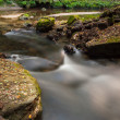 Stock Photo: Rapids flowing along forest