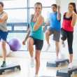 Instructor with fitness class performing step aerobics exercise — Stock Photo #36248121