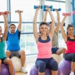 Class exercising with dumbbells on fitness balls — Stock Photo #36248785