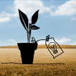 Light bulb plant over countryside — Stock Photo