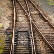 Railway tracks — Stock Photo #36249115