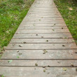 Stock Photo: Wooden walkway along grassland