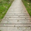 Wooden walkway along grassland — Stock Photo