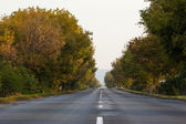 Tarmac country road along trees and against clear sky — Stock Photo