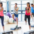 Instructor with fitness class performing step aerobics exercise — ストック写真