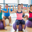 Class exercising with dumbbells on fitness balls — Stock Photo