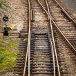 Railway tracks — Stock Photo #36251161