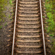 Railway track — Stock Photo #36251375