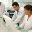 Team of science students working together in the lab — Stock Video #36278839