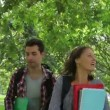 Stock Video: Cheerful students walking outside