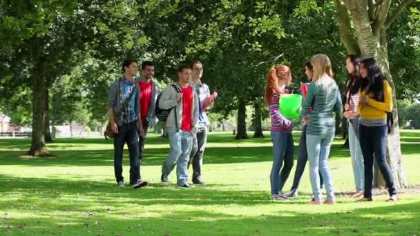 Estudiantes ligar juntos afuera — Vídeo de stock