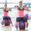Two fit women with dumbbells on fitness balls in gym — Stock Photo #38453869