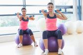 Zwei fit frauen mit hanteln auf fitness bälle im fitnessstudio — Stockfoto