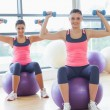 Two fit women with dumbbells on fitness balls in gym — Stock Photo #38460377