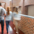 Stock Photo: Students walking in hall together