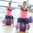 Two fit women with dumbbells on fitness balls in gym — Stock Photo #38465869