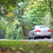 Car driving down a road surrounded by forest — Stock Video