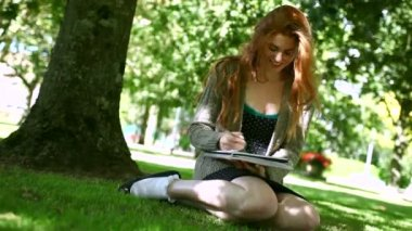 Smiling redhead doing assignments sitting on lawn — Stock Video