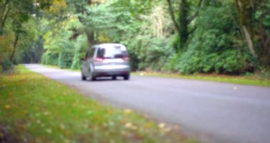 Car driving down a road surrounded by trees — Stock Video
