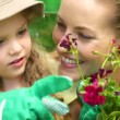 Cute little girl looking at pot of flowers with her mother — Stock Video #39158395